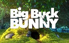 Игровой автомат Big Buck Bunny