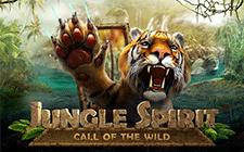 Игровой автомат Jungle Spirit