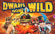Игровой автомат Dwarfs Gone Wild