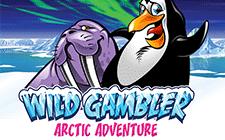 Игровой автомат Wild Adventure