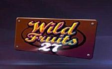 Игровой автомат Wild Fruits 27