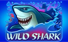 Игровой автомат Wild Shark